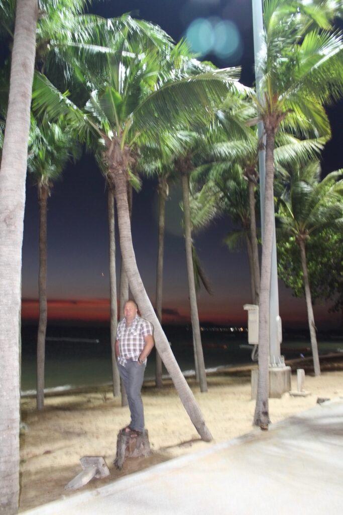 пальмы море