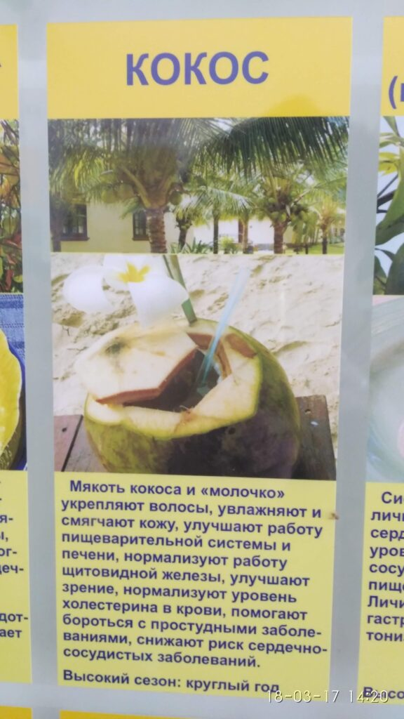 кокос фото